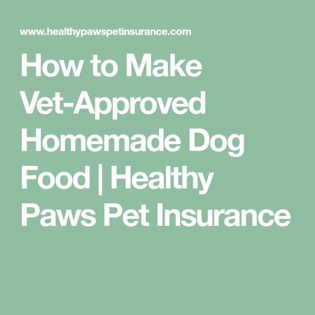 How to Make Vet-Approved Homemade Dog Food | Healthy Paws