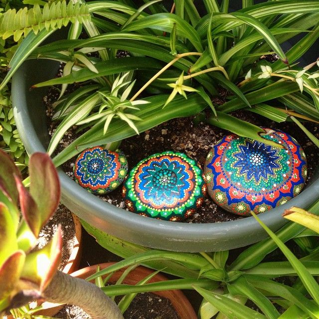 These stones look so comfortable all cuddle up next to this spider plant. Perfect match! ☀️❤️ #sandiego #california #ca #paintedstones #riverstones #paintedrocks #riverrocks #painted #acrylic #paint #art #garden #gardenart #spiderplant #plant #patio #shade #pretty #beautiful #earth #nature #hippiespirits #peace #love #artbyevamarie #trio
