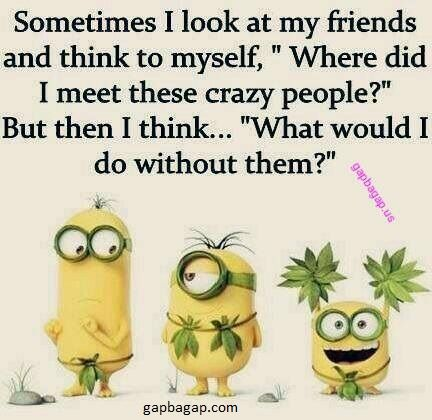 Funny Minion Quote About Friends Vs Crazy People Friends Quotes Funny Funny Minion Quotes Best Friend Quotes Funny