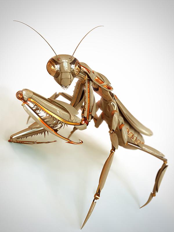 INSPIRATION 3D #6 | Animales