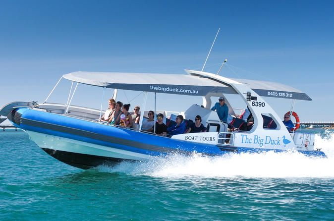 Seal Island Boat Tour From Victor Harbor Depart From The Granite Island Causeway For An Exhilarating 45 Minute Boat Ride Visit S Boat Tours Wildlife Tour Boat