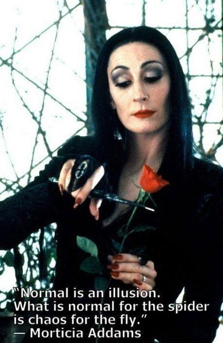 """"""" Normal is an illusion. What is normal for the spider is chaos for the fly.""""- Morticia Addams"""
