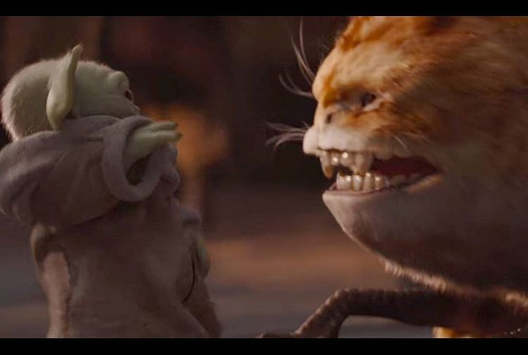 Stills Of Baby Whatever Species Yoda From Episode 4 5 7 Always Follow Themandalorianfp For Mo Star Wars Disney Star Wars Star Wars Baby