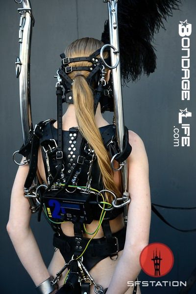 Greyhoundsowner Greyhound Attended The Folsom Street Fair Last Weekend As A Pony Girl Under