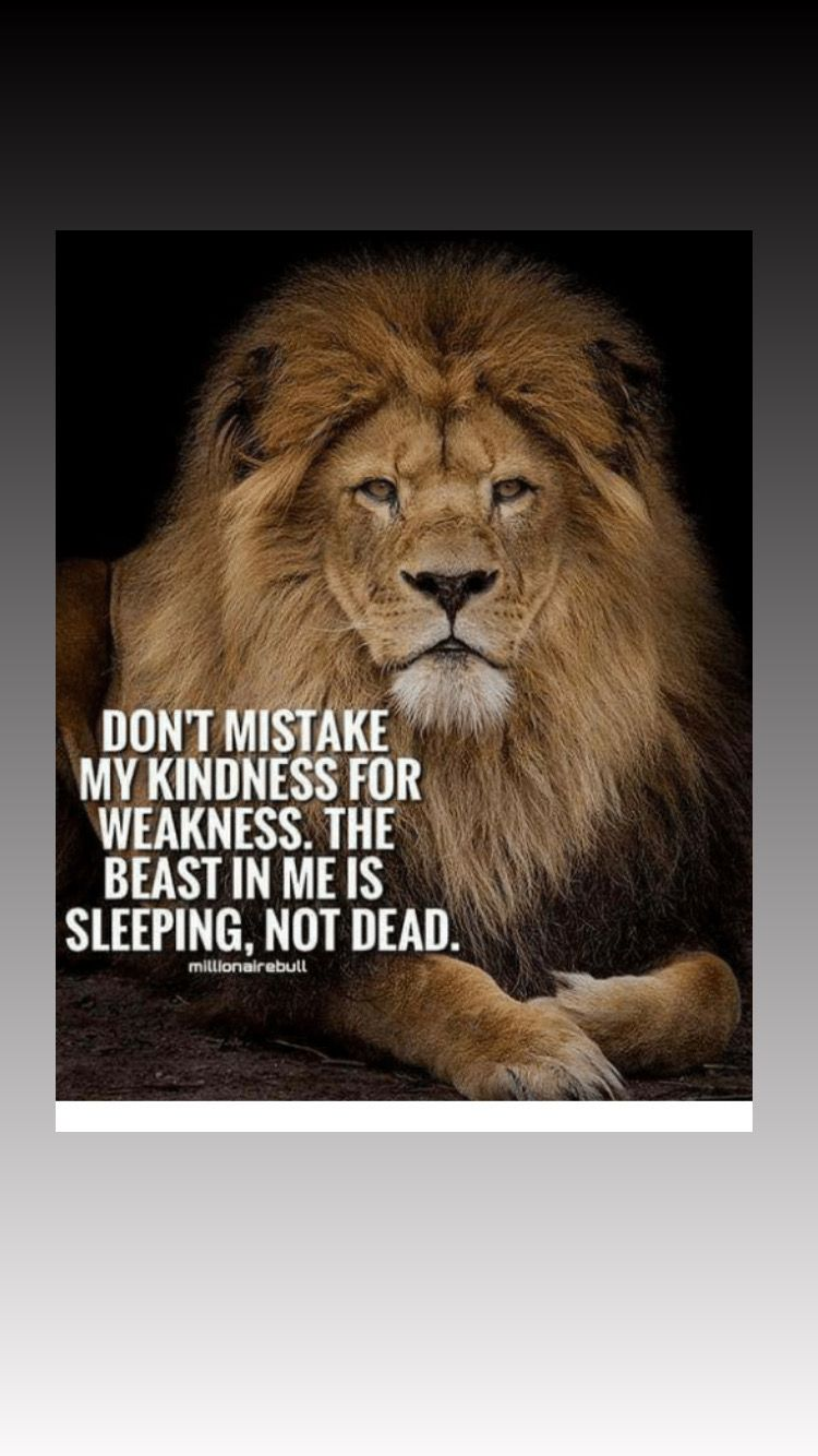 Pin By Sergio Maraver On Leo S Lion Quotes Short Inspirational Quotes Super Funny Quotes