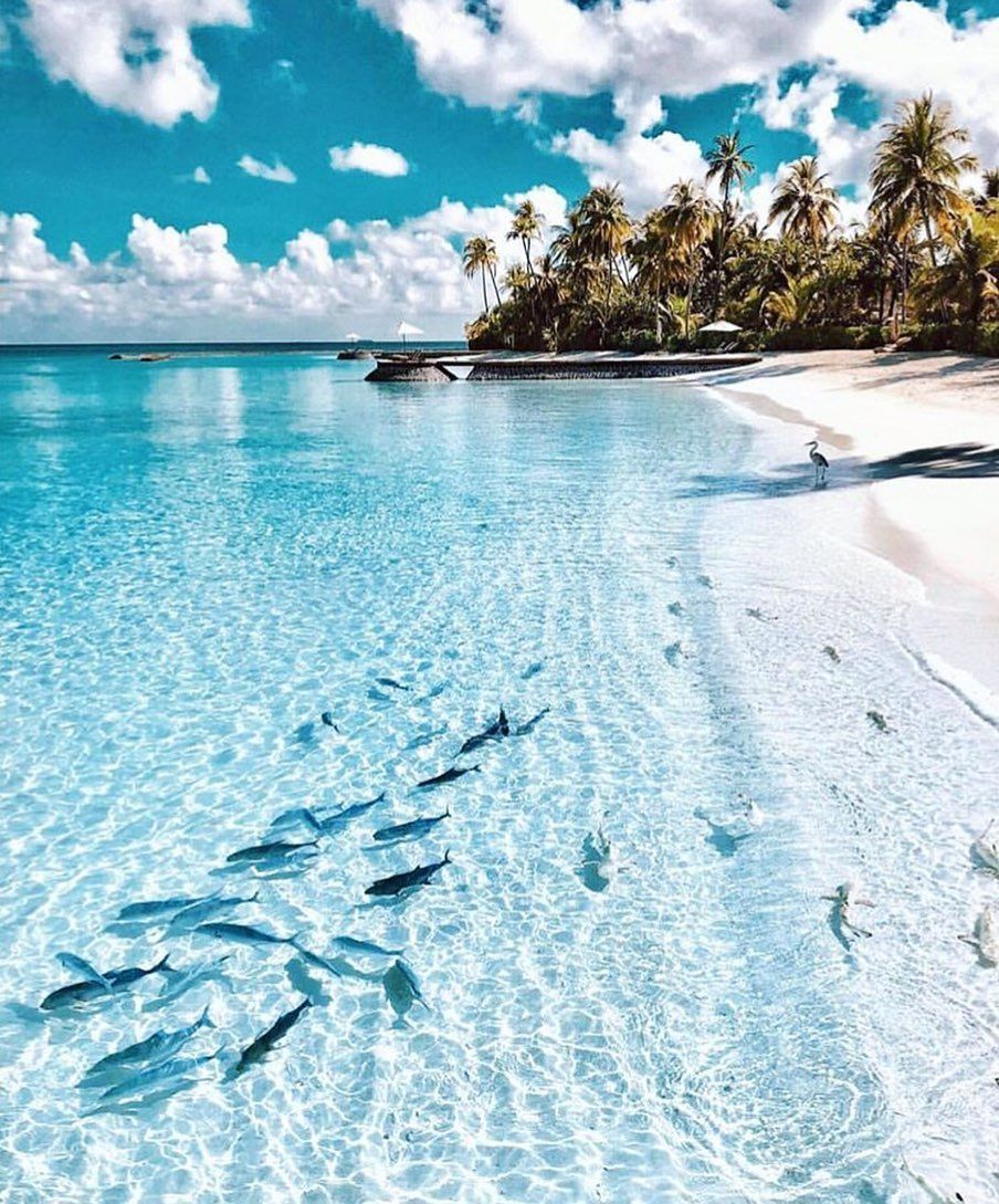 Pin By Mia Naylor On Beach Places To Travel Nature Scenery
