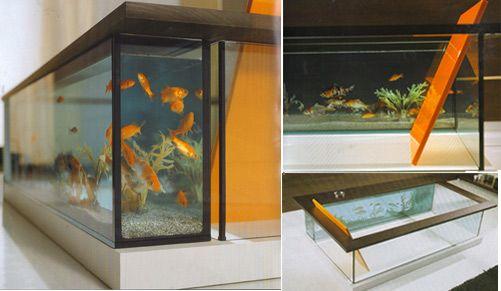 Elegant 13 Unexpected Aquarium Design Ideas Great Ideas