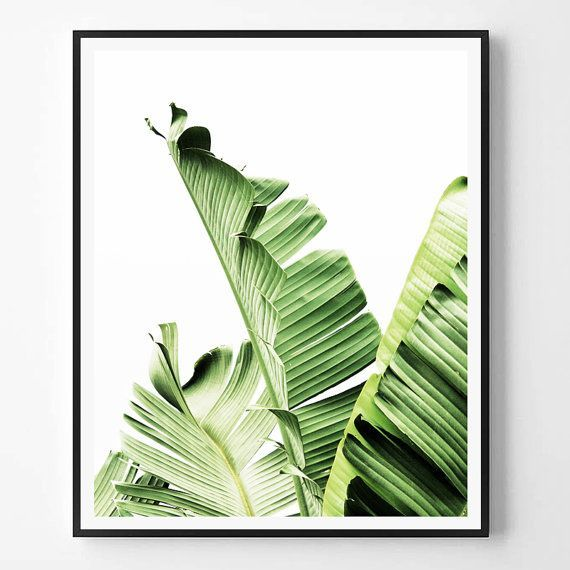 Banana Leaf Print Photography Tropical Plant Photo Wall Art Minimalist Green Scandinavian Printable