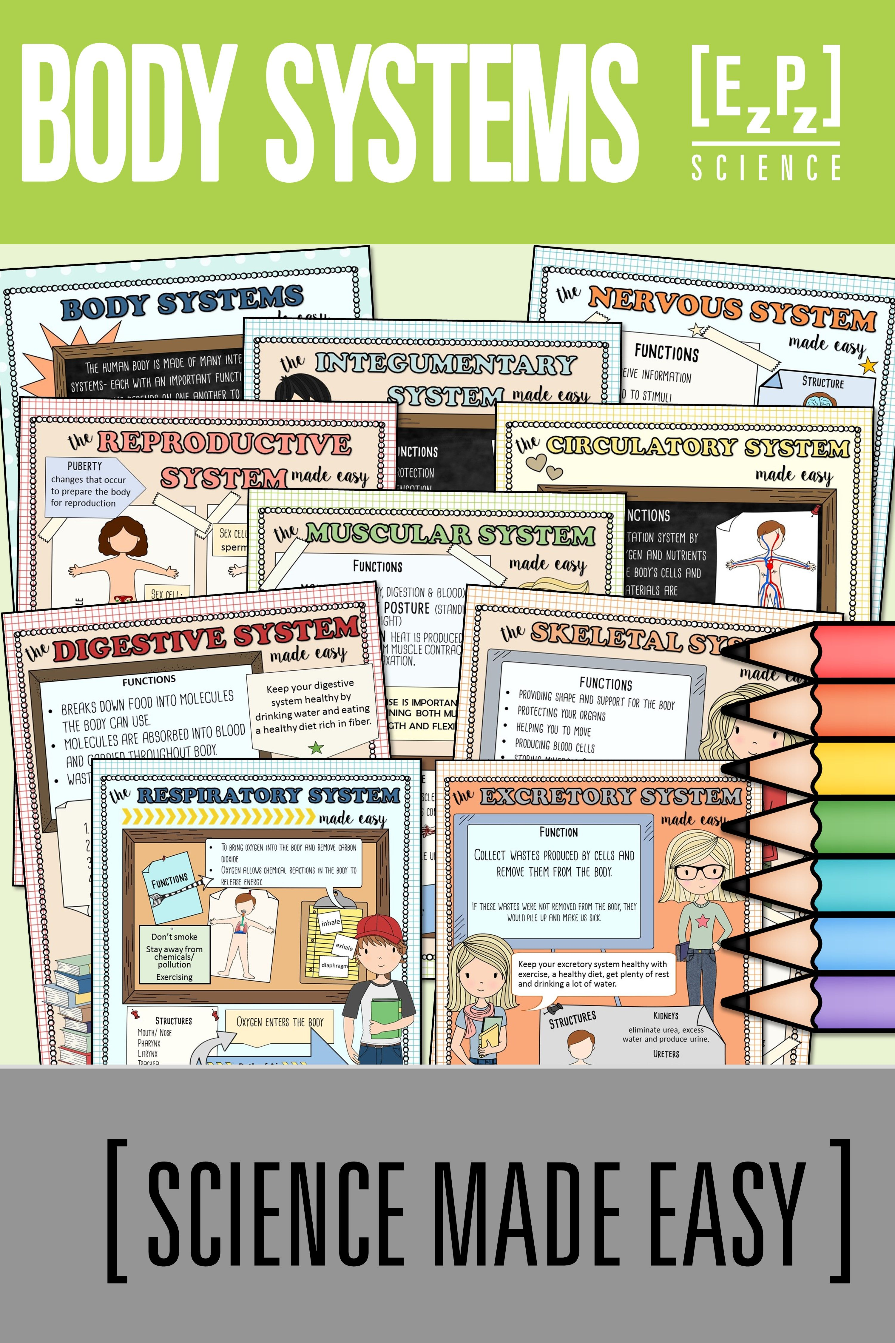 Body Systems Made Easy Bundle Student Notes And