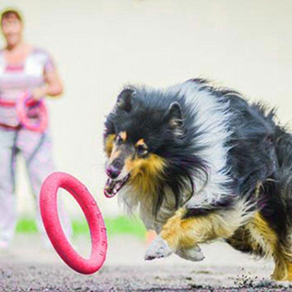 Dog Eva Flying Discs Pet Training Ring Interactive Training Dog