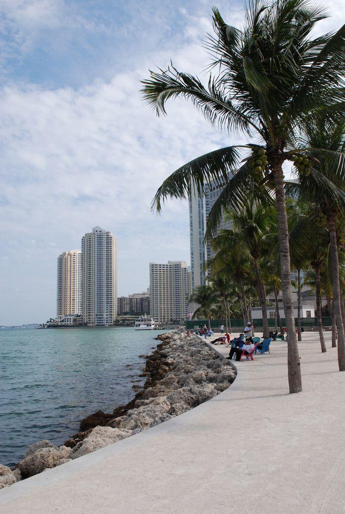 Best 48 Hours: Living La Vida in Miami, Florida  Like Duplicate
