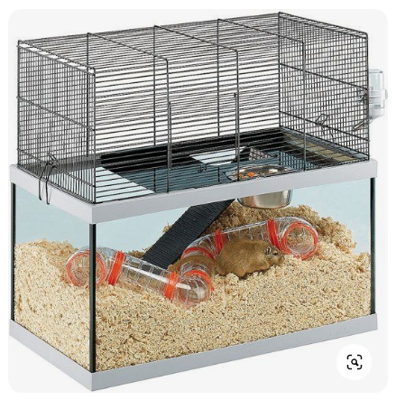 Best Hamster Cages Of 2020 Reviews And Where To Buy In 2020 Hamster Cages Cool Hamster Cages Hamster