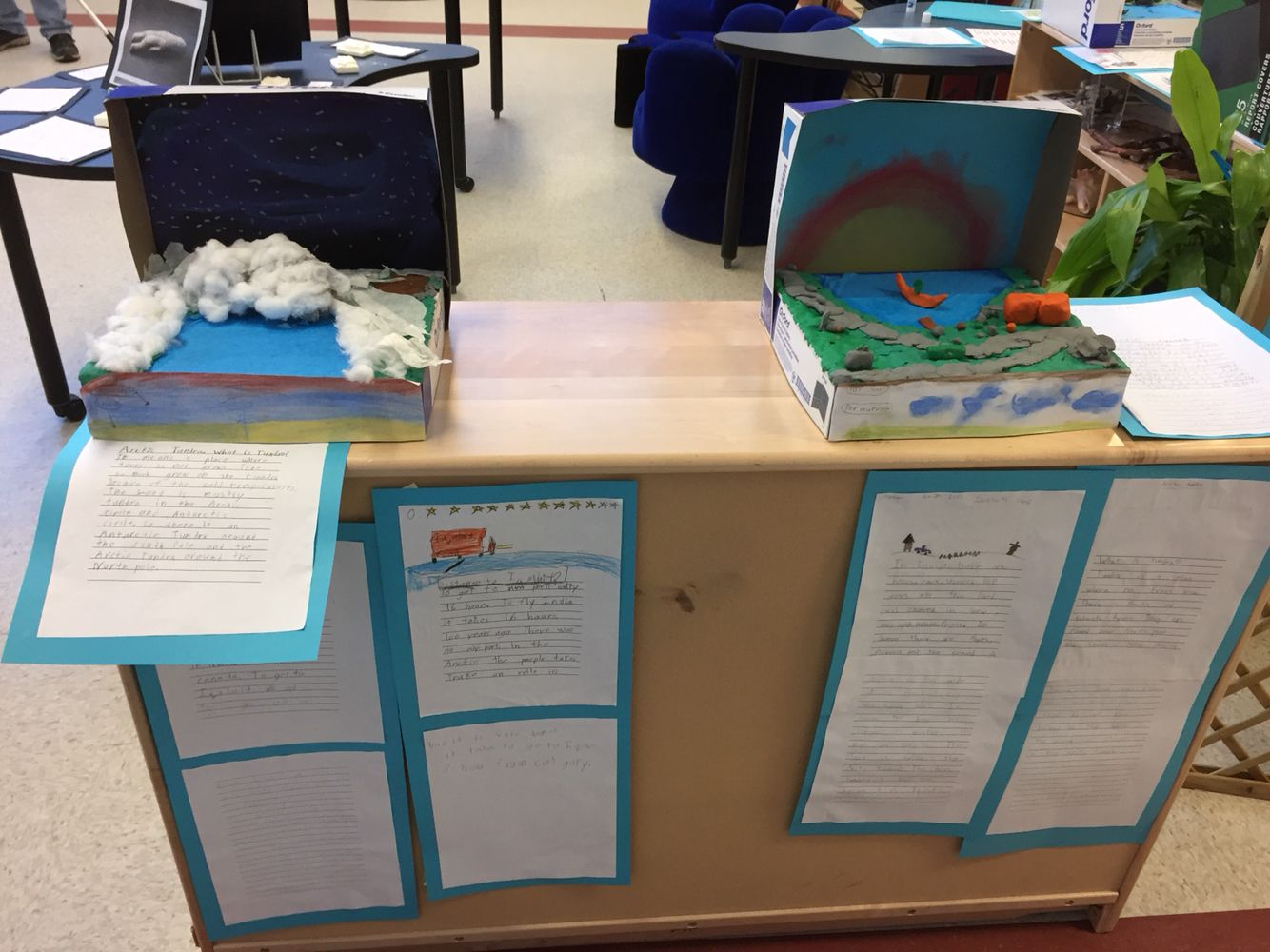 Arctic Dioramas Made By Grade 2 Students For Our Arctic