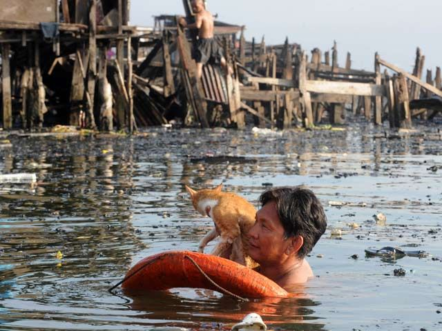A resident holds his cat at the site of a fire in a shanty town in Manila on May 12, 2012. Shanty homes were destroyed by a huge fire that swept through Manila's largest coastal slum on May 11. AFP PHOTO / Jay DIRECTO - AFP
