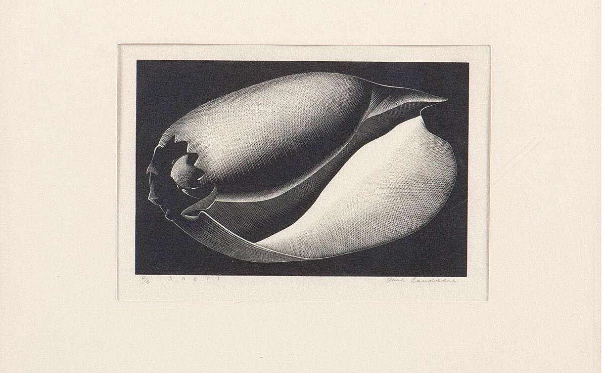 "Paul Landacre (1893-1963 Los Angeles CA). ""Shell, 1935, signed in pencil in the lower right margin: Paul Landacre, numbered and titled in pencil in the lower left margin: 4/6 (likely 4/60 of first edition), wood engraving on japon paper, sight size: 4.5"" H x 7""W."