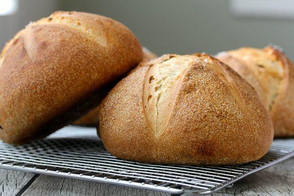Panmarino - Italienisches Rosmarinbrot   - Breads, Bagels & Buns -