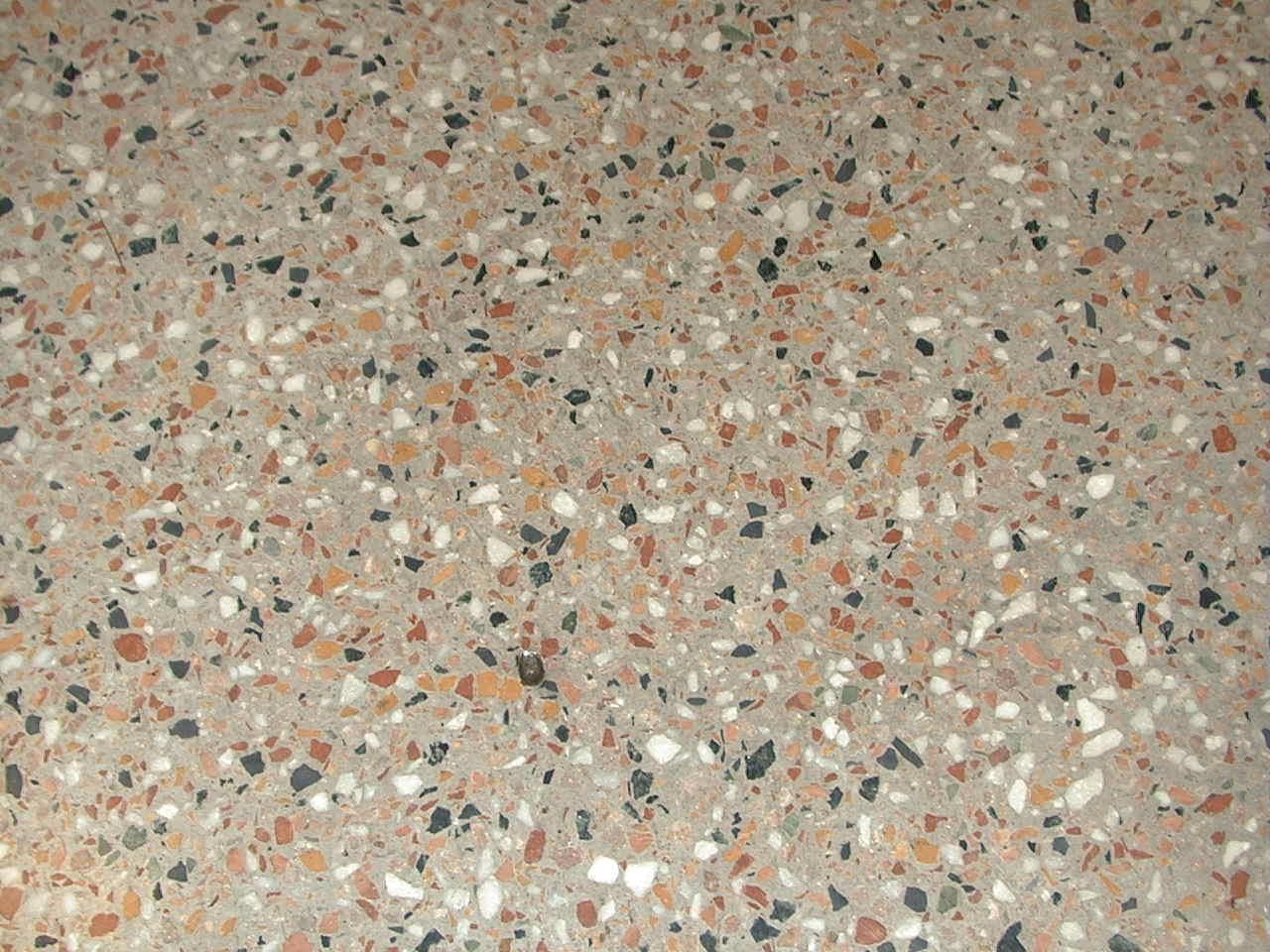 Kitchens Roman Holiday Terrazzo Floors