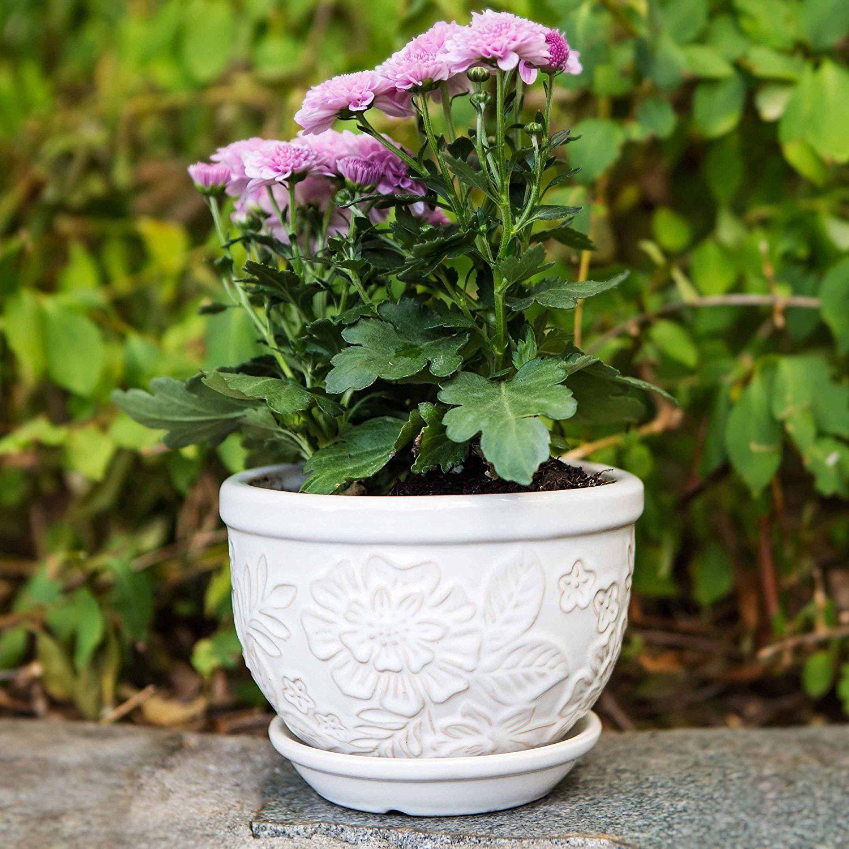 Pennington Ceramic Vintage Fl Pot Planter 8 Inch Garden Outdoor