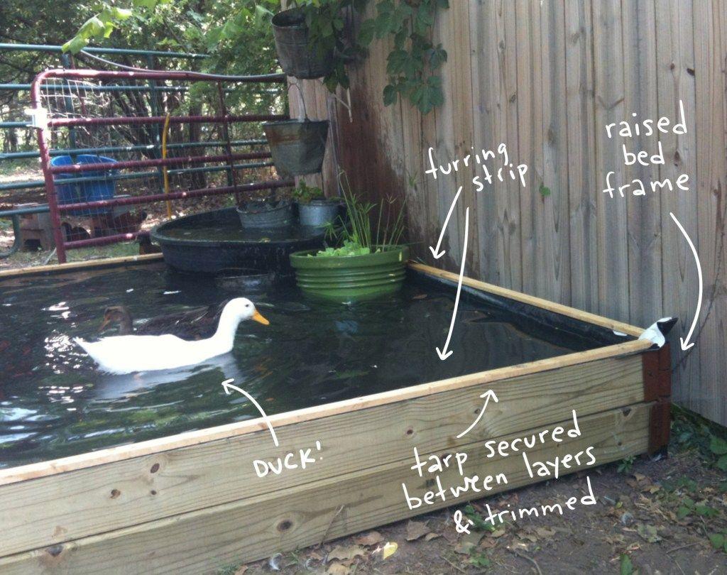 How to Build a No-Dig Backyard Pond for Under $70 | Ponds ...