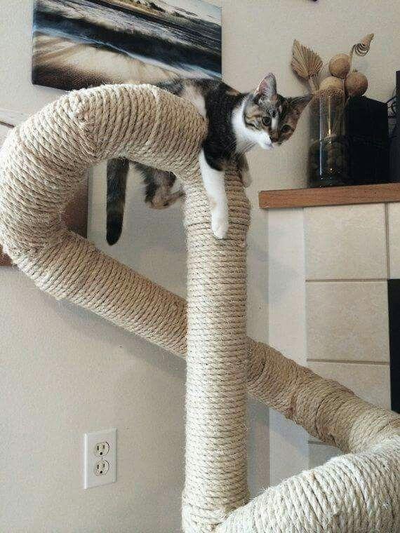 pvc buis met sisal diy cat