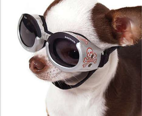 Sleek Pet Carriers Dog Goggles Dog Helmet Pets
