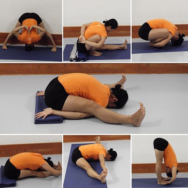 Pin by IYNAUS on Yoga Poses | Iyengar yoga, Easy yoga ...