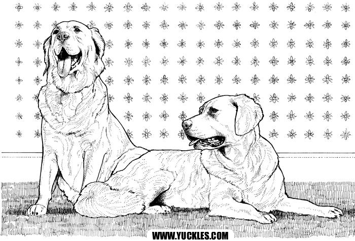 Golden Retriever Coloring Page By Yuckles Dog Coloring Page Puppy Coloring Pages Animal Coloring Pages