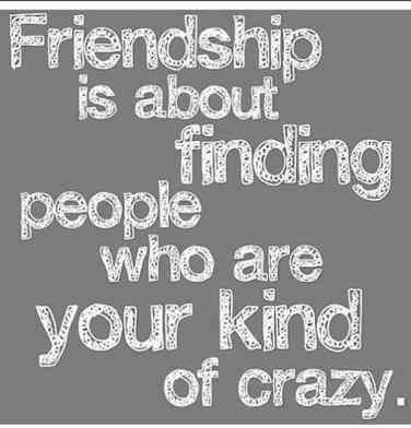 30 Funny Quotes About Friendship To Use For Your Next ...