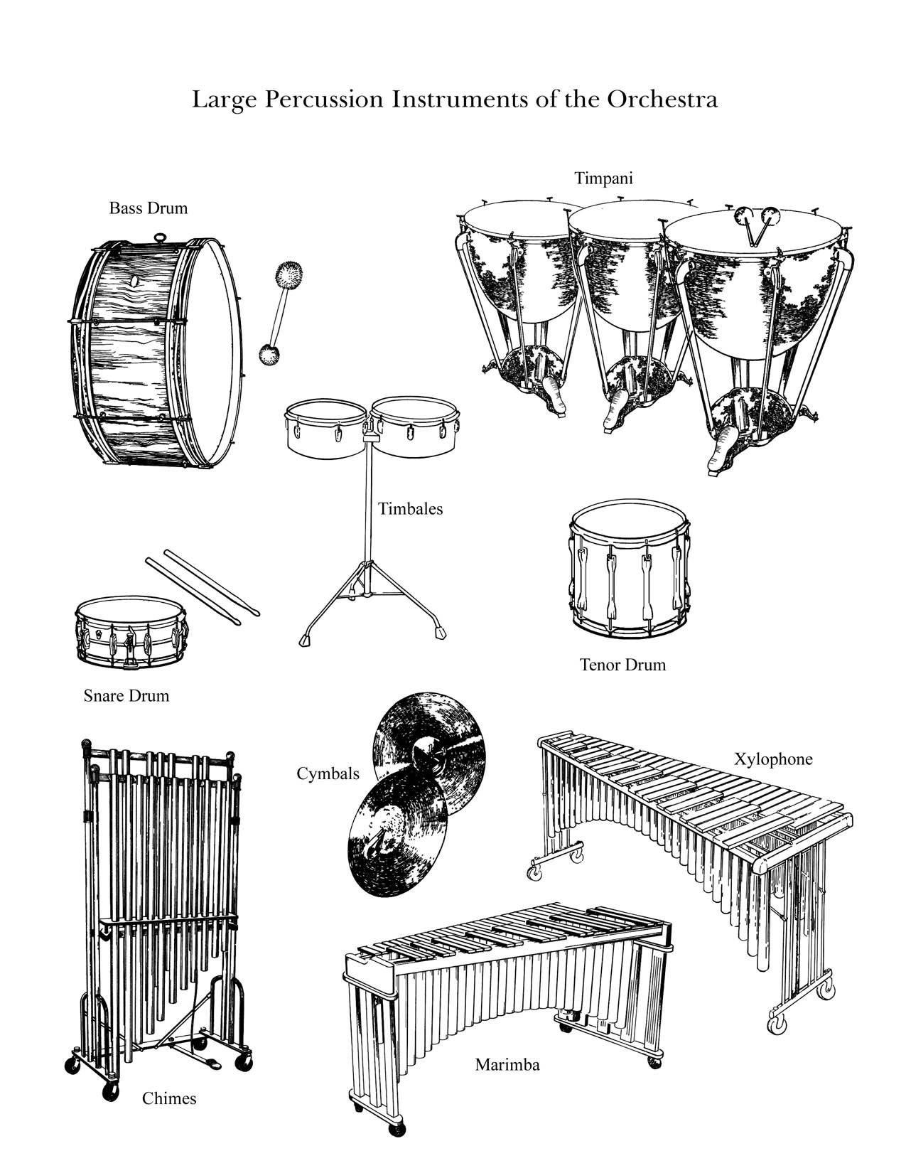 "the percussion family (large)"" : large instruments from the"