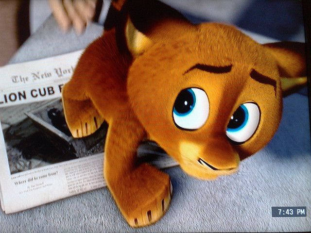 Baby Alex Madagascar Escape 2 Africa Madagascar Movie Lion King Pictures Madagascar Escape 2 Africa