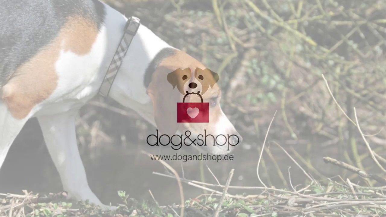 Hunde Im English Style Dogandshop De English Style Hunde Hund Zubehor