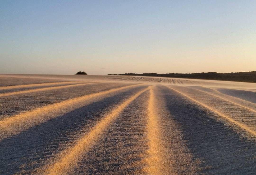 All elements in one village - Pemberton. Great location! Next week #greatoceanroad. #pemberton #australia #sand #dunes #nature #sunset #friends #travel_sons_official #travel #wanderlust #holidays #workandtravel #trip  @jonask.n @fritzloeh @paulaffel by travel_sons_official