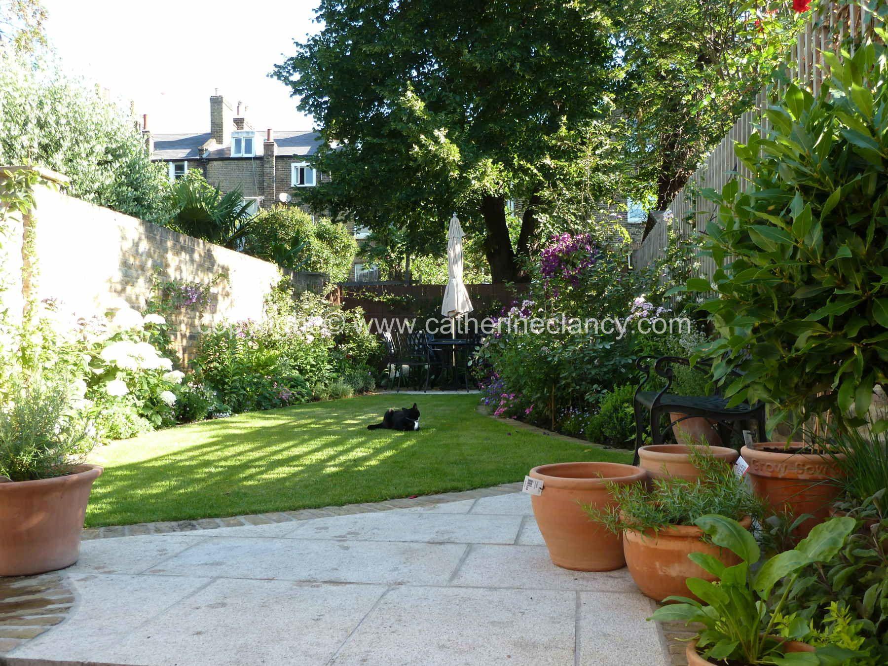 Victorian North Facing Garden By Blackheath Based Garden Designer Catherine Clancy Msg North Facing Garden Garden Design London Small North Facing Garden Ideas