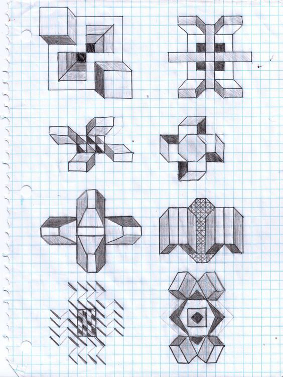 Drawing of leaves on graph paper ve Drawing of leaves vector