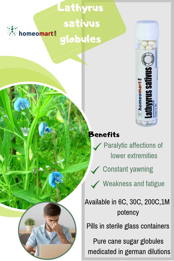 Lathyrus Sativus 2 Dram Pills 6C, 30C, 200C, 1M, 10M   Buy