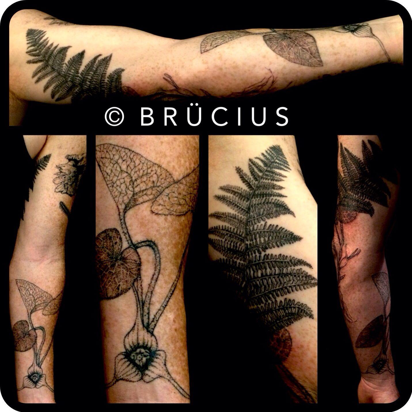 Brucius tattoo sf engraving etching stippling