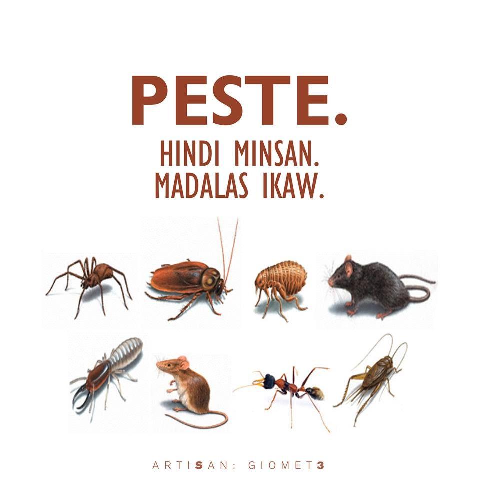 Pin By Topak Esa On Tagalog Kowts Humor Tagalog Quotes Hugot Funny Tagalog Quotes Hugot