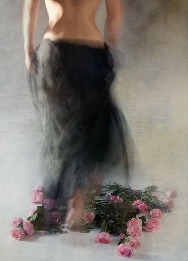 Miriana Mitrovich | Bulgarian-born Canadian Abstract photographer | Four Dozen Roses. °