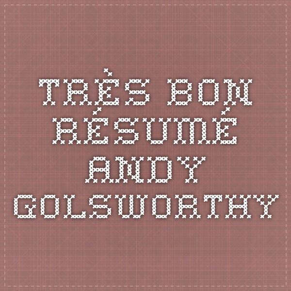 Très bon résumé Andy Golsworthy