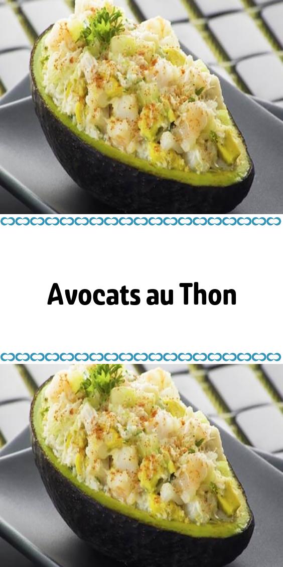 Avocats au Thon