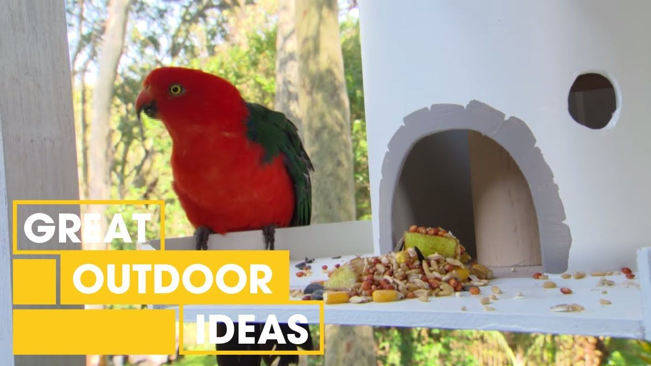 How to make your own diy bird feeder outdoor great