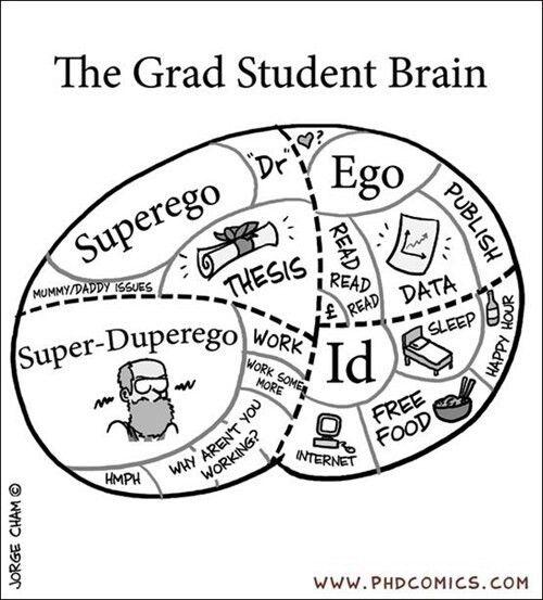 Psychology Of A Phd Student Psychology Pinte