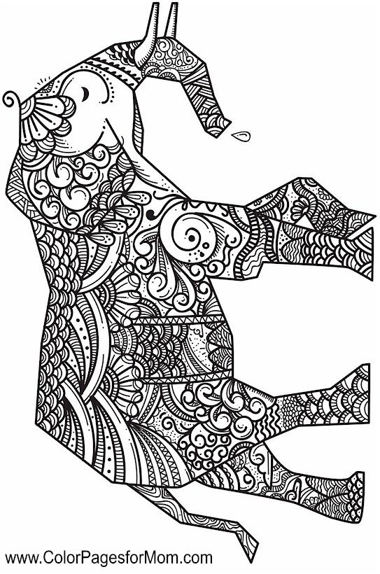 elephant zentangle coloring page if youre looking for the top
