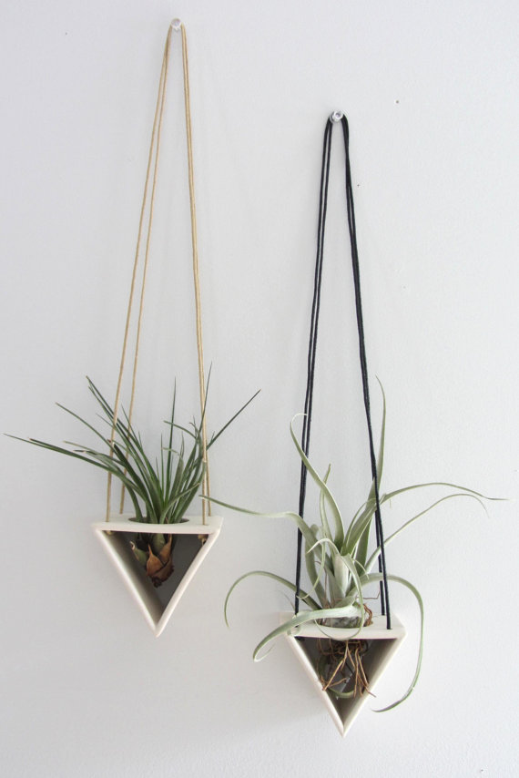 Dreieck Tillandsia Aufhänger - Bestelloptionen #hangingplantsindoor