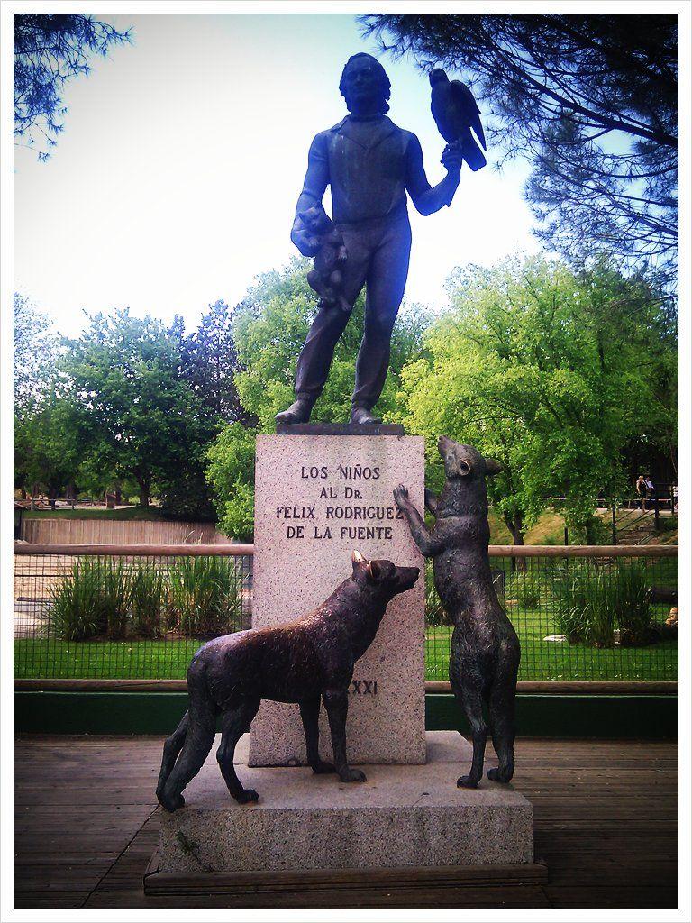 Estatua Del Gran Maestro Félix Rodríguez De La Fuente En El Zoo De Madrid Zoo De Madrid Felix Rodriguez Madrid España