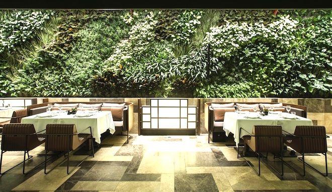 Nopa Restaurant Autoban Interior Design Green Wall Vertical Garden Wraparound