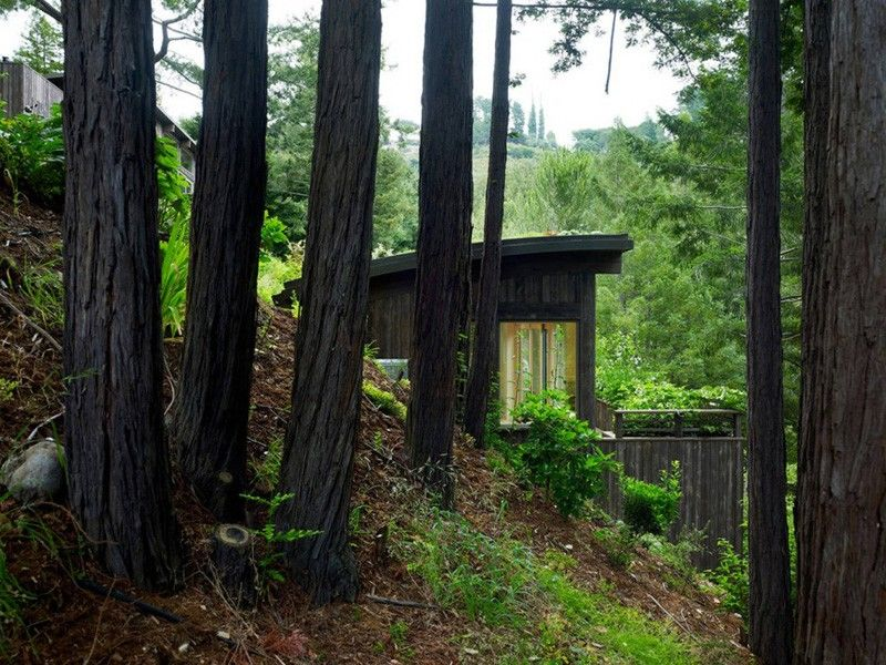 Two Hillside Cabins In The Trees By Feldman Architecture