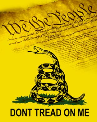 don t tread on me gadsden flag we the people as background