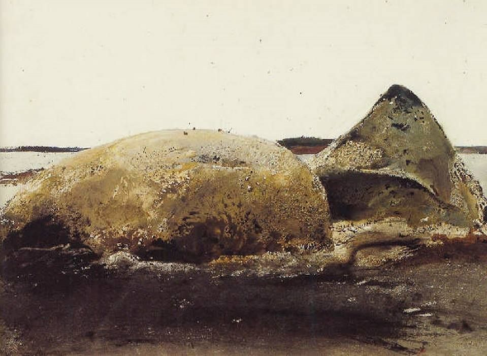 Andrew Wyeth (1917 — 2009, USA) Sea snails. 1953 watercolor. 50.8 x 71.1 cm. (20 x 28 in.) © Andrew Wyeth