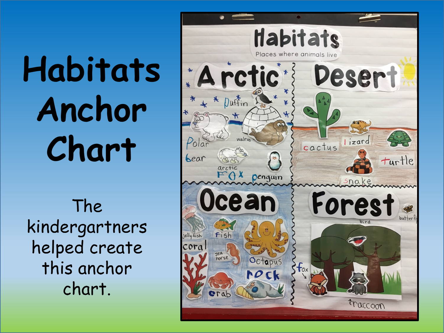 This past week we learned about habitats since it also